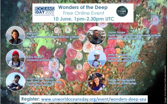 WOD_Wonders of the Deep